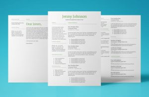 mercury resume template bundle