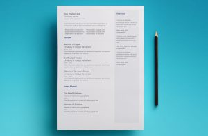 neptune resume template page 2